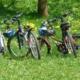 familien-fahrradsonntag