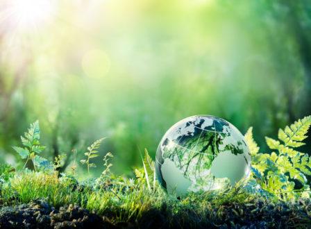 Der Klimaschutz hat oberste Priorität