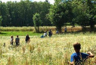sommerferiencamp-kids-taunus-outdoor-school