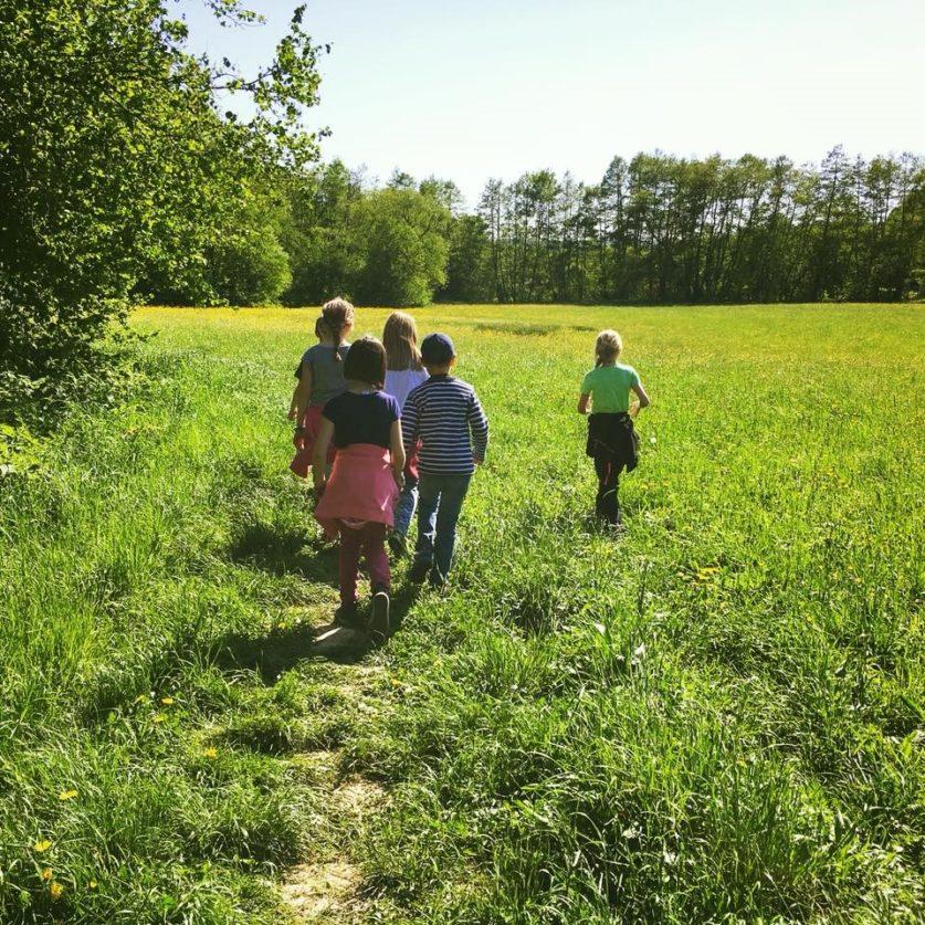 mediation und sinne-outdoor-school